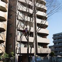 プレールアパートメント芦花公園