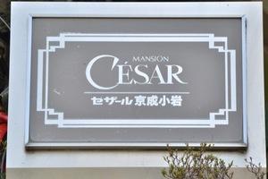 セザール京成小岩の看板