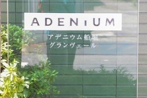 アデニウム船堀グランヴェールの看板