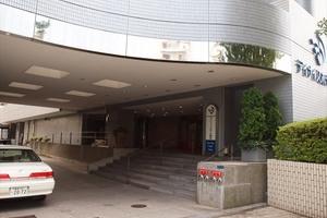 デイナイスホテル東京のエントランス