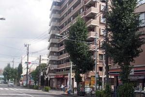 朝日シティパリオ十条の外観