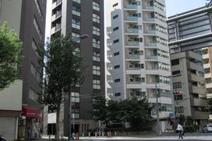 トーシンフェニックス西新宿5丁目弐番館の外観