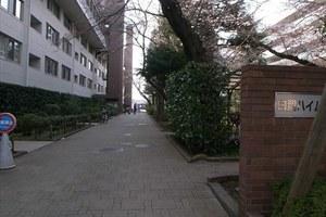 白鷺ハイム(1〜4号棟)のエントランス