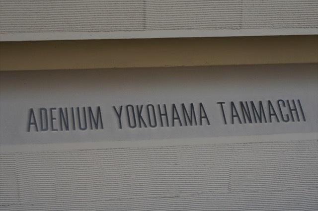 アデニウム横浜反町の看板