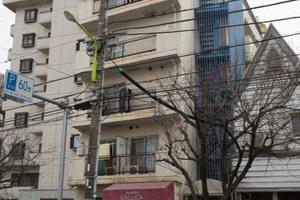 ドム桜新町の外観