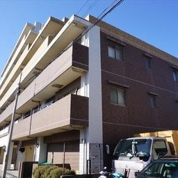 パラモド横浜三渓園