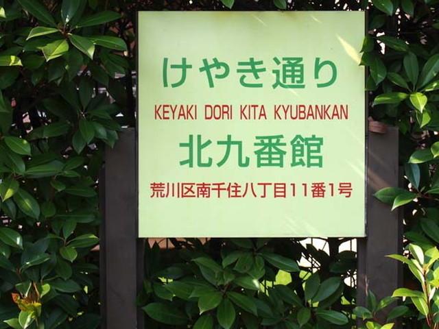 ケヤキ通り北9番館の看板