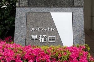 ルイシャトレ早稲田の看板
