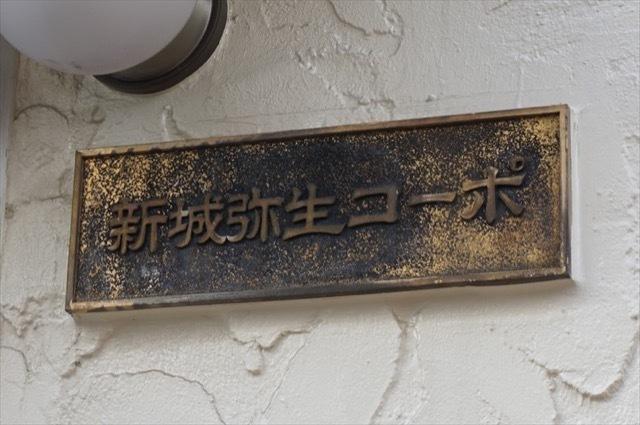 新城弥生コーポの看板