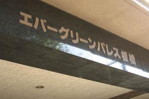 エバーグリーンパレス板橋の看板