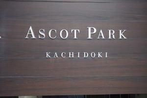 アスコットパーク勝どきの看板