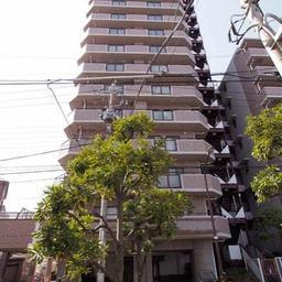 ライオンズマンション綾瀬谷中公園