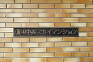 蓮根中央スカイマンションの看板