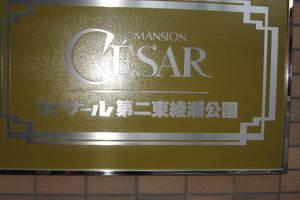 セザール第2東綾瀬公園の看板