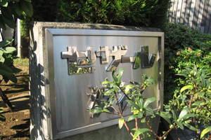 セザール渋谷の看板