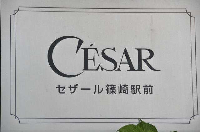 セザール篠崎駅前の看板
