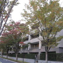 パークシティ成城(A〜Hコート)