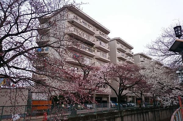 東急ドエルアルス石川台A棟の外観