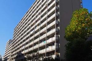東卸豊海住宅(1〜3号棟)