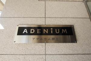 アデニウム押上の看板
