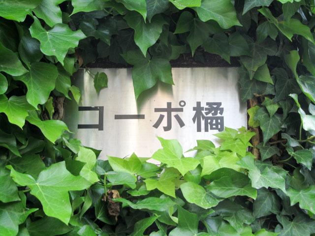 コーポ橘(新宿区)の看板