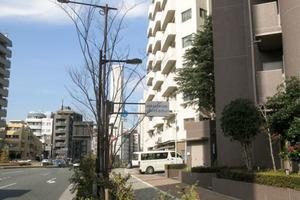 中野坂上マンションの外観