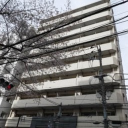 メインステージ滝野川桜通り