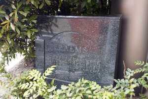 パームス東池袋の看板