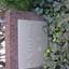 サンクレイドルレヴィール池袋の看板