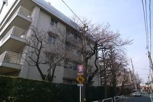 白鷺ハイム(1〜4号棟)の外観