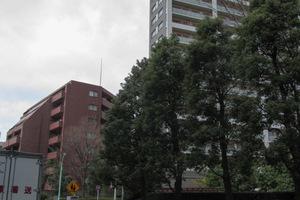 渋谷アインスの外観