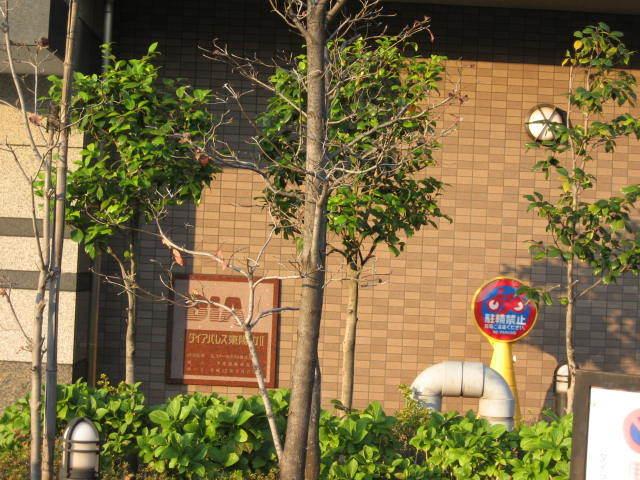 ダイアパレス東陽町2の看板