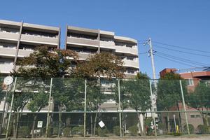 ドルチェ東京押上ツインズ壱番館の外観
