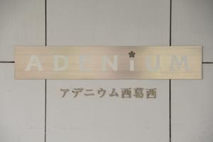 アデニウム西葛西の看板