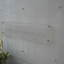 ベルパティオ堀切菖蒲園の看板