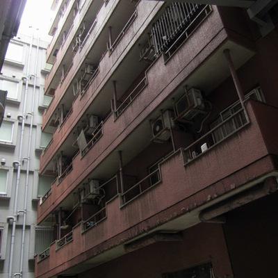パレドール歌舞伎町