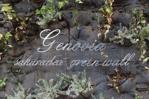ジェノヴィア桜台グリーンウォールの看板
