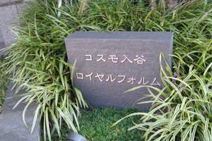 コスモ入谷ロイヤルフォルムの看板