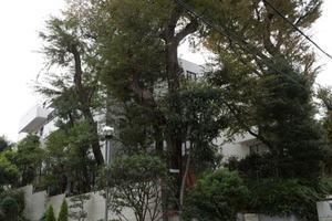イースタンホームズ若林の外観