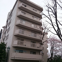 東急ドエルアルス石川台B棟