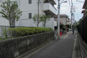 ルーブル新宿の外観