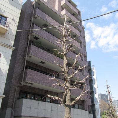 藤和渋谷常磐松ホームズ