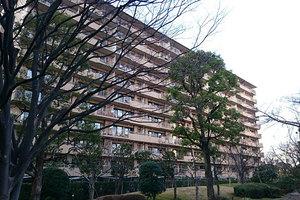 多摩川ハイム1号棟の外観