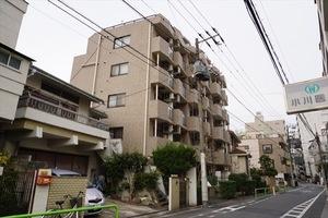 ライオンズマンション大山金井町の外観