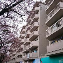 東急ドエルアルス石川台A棟