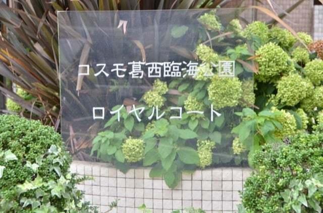 コスモ葛西臨海公園ロイヤルコートの看板