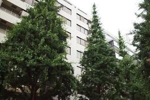 グランドメゾン紀尾井坂の外観