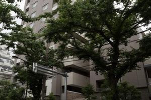 グランドメゾン江古田の外観