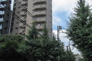 グリーンパーク新宿の杜の外観