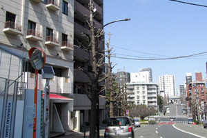 藤和渋谷常磐松ホームズの外観